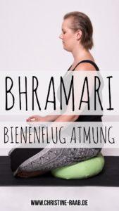 bhramari, bienenflug, bienen, hummel, atmung, pranayama, atemtechnik