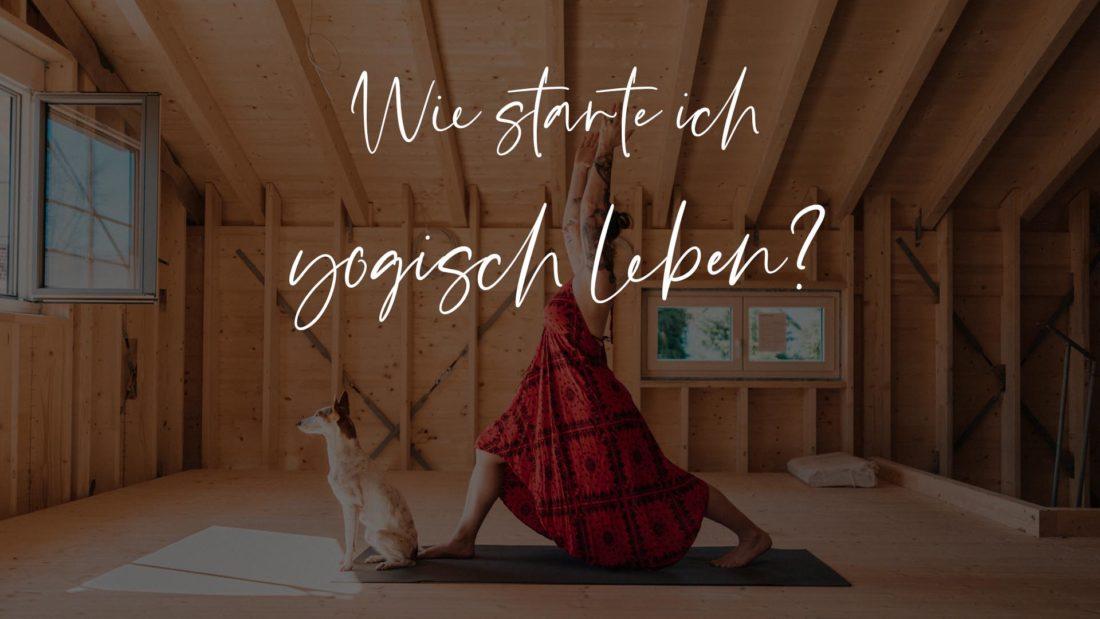 Titelbild zum Blogbeitrag Wie starte ich yogisch zu leben Christine Raab macht mit Hund eine Yogapose