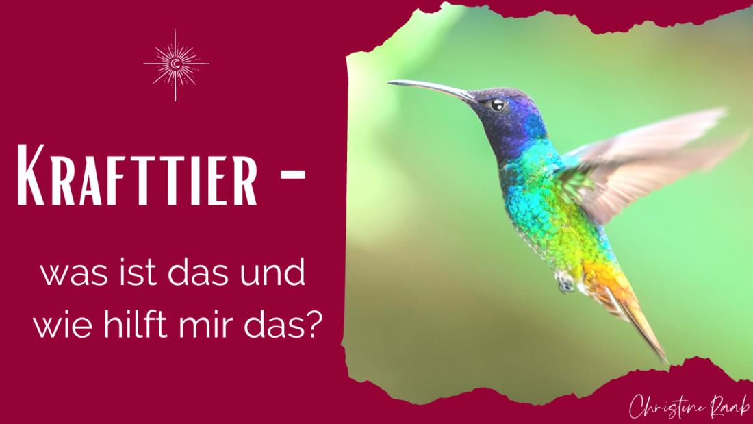 Krafttier Artikelbild für Podcast und Blogpost im Yogisch by Nature Podcast - du siehst einen Kolibri auf dem Foto und den Text mit dem Podcast Titel